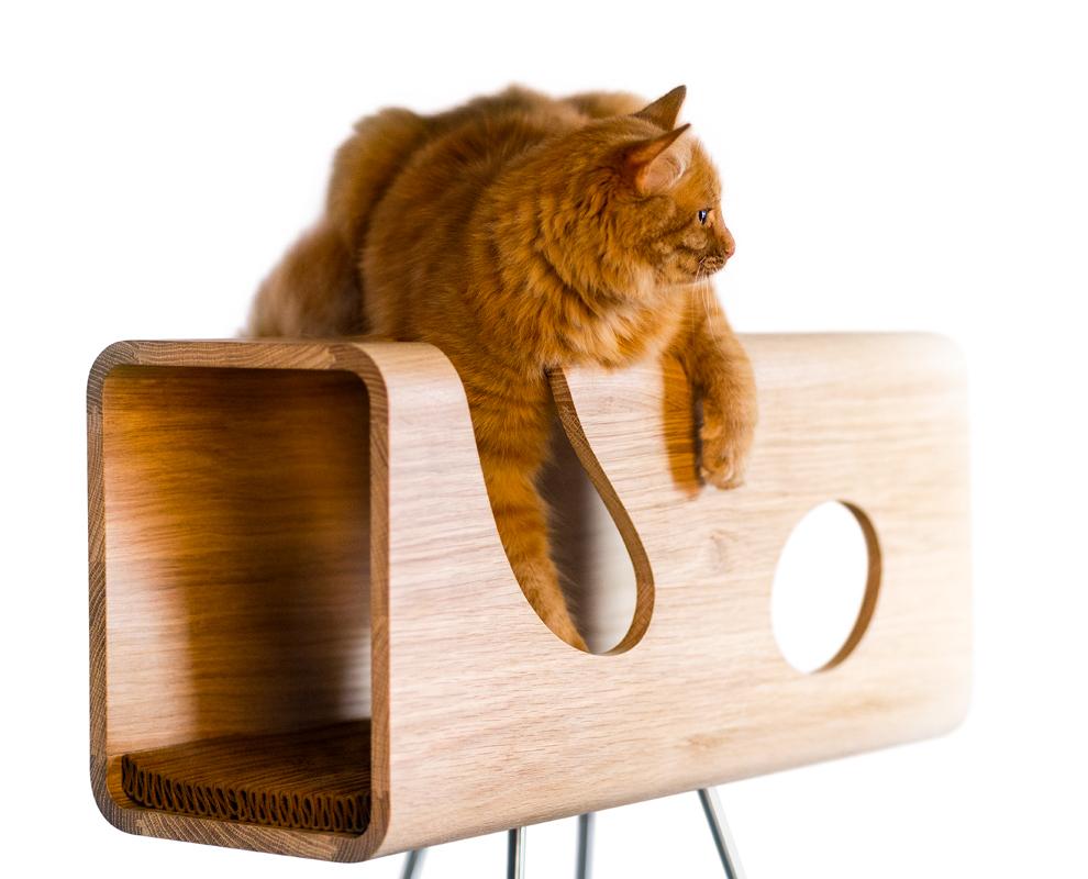 Cucce Design Per Cani brandodesign